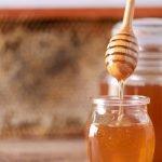 Lograron producir miel de abejas, pero sin abejas.